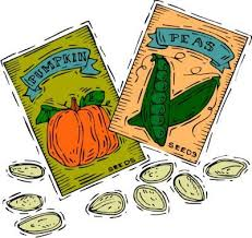 seed packets clipart seed packets clipground