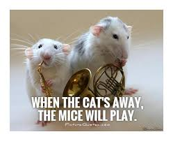 Are Mice Blind When The Cat U0027s Away The Mice Will Play Picturequotes Three