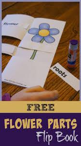 best 25 free education ideas on pinterest free educational apps