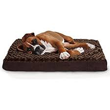 Dog Sofas For Large Dogs by Amazon Com Furhaven Orthopedic Mattress Pet Bed Large