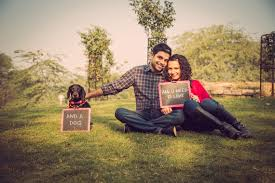 pre wedding quotes 9 ways to involve your pets at weddings cho chweet