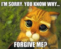 Sorry Memes - best 21 i m sorry memes life quotes humor