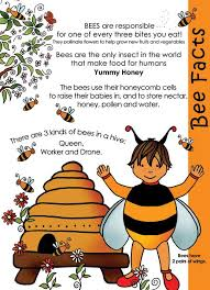 the 25 best bee facts for ideas on interesting