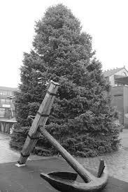 christmas trees on sale black friday in pictures 2015 bowen u0027s wharf christmas tree lighting u2013 what u0027supnewp