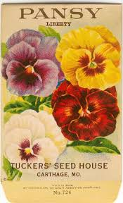 flower seed packets vintage flower seed packet tuckers seed house lithograph pansy