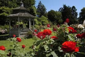 Urban Garden Woodland Hills - rose garden woodland park zoo seattle wa