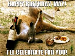 Birthday Memes For Facebook - 45 most funny kangaroo meme photos and images