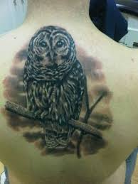 9 best dark owl and tree tattoos images on pinterest black eyes