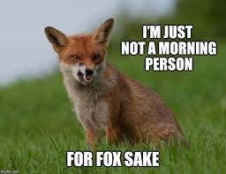 Not A Morning Person Meme - i m just not a morning person for fox sake meme