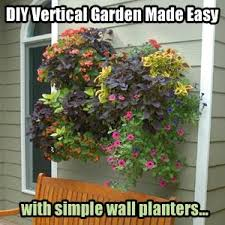 how to use wall planters for a diy vertical garden