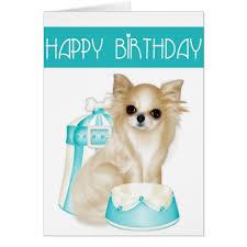 chihuahua happy birthday greeting card zazzle