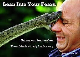 Fear Meme - lean into your fears meme 5imon5ays5tuff