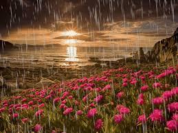 imagenes de paisajes lluviosos pin de eitana en lluvia pinterest fotos de naturaleza paisajes