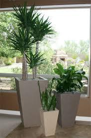 Outdoor Vase Concrete Landscape Planters Outdoor Concrete Planters Phoenix