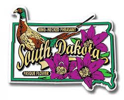 state bird of south dakota south dakota state bird and flower magnet classicmagnets com