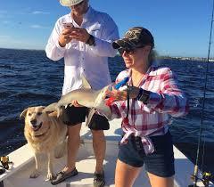 black friday fishing captiva fishing blacknose captiva fishing report