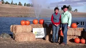 Pumpkin Patch Moorpark by Denver Area October Harvest Fest Pumpkin Patch And Corn Maze Youtube