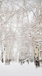 birch trees winter landscape iphone 8 wallpaper download iphone