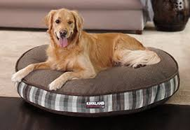 Covered Dog Bed Pet Supplies Costco