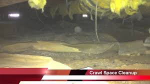 Crawl Space Cleaning San Francisco Crawl Space Cleaning In San Jose Ca Swift Restoration Youtube