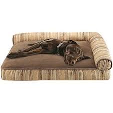 Kong Dog Beds Kong Dog Bed The Perfect Bed For Strong Chewers Its Advertised