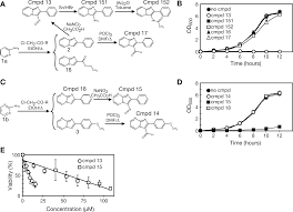 chemical u2013genetic profiling of imidazo 1 2 a pyridines and