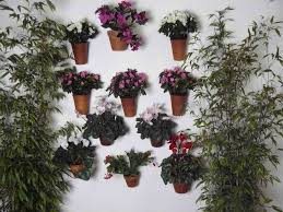 articles with wall mounted plant pots holders tag wall mounted