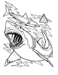 winsome great white shark coloring pages 20 sharks for shark week