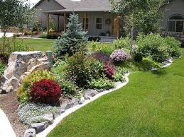 Backyard Plants Ideas 2082 Best Landscape Backyards Outdoor Living Images On Front Yard