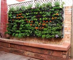 pictures what to grow in a small vegetable garden free home