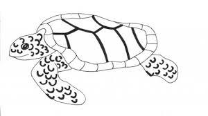 sea turtle drawing cute sketch doodle drawing sea turtle art