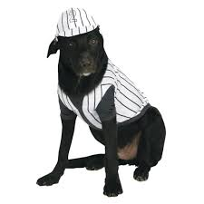 Cheap Dog Costumes Halloween Baseball Player Small Dog Costume Products Small