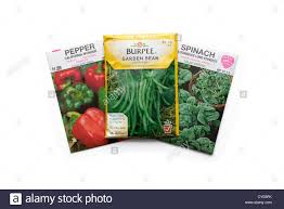 seed packets vegetable seed packets stock photo royalty free image 51019435