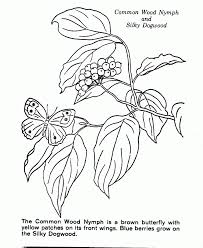back yard nature coloring book coloring page for kids kids coloring