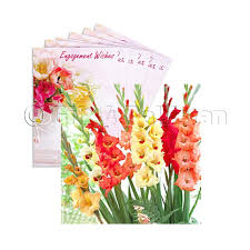 gladiolus flowers send online gifts beautiful gladiolus flowers gift4pakistan