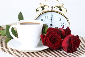 drink photography flower good morning flowers drink photography harmony clock nice