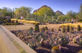 Botanical Garden Pictures by Asla 2013 Professional Awards Ottosen Entry Garden Desert