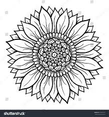 vector illustration flower mandala coloring page stock vector