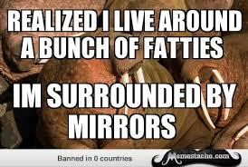 Walrus Meme - walrus meme by vegamineral on deviantart