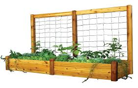 enchanting raised garden bed with trellis building raised bed