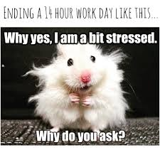 Tired Meme - current feels work stress tired boss childcare school