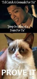 Internet Meme Songs - hahahahaha i love that song but i love grumpy cat even more