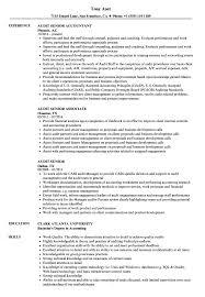 audit senior resume samples velvet jobs