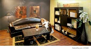 african living room decor home decorating inspiration