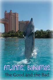 atlantis bahamas reviews the good and the bad