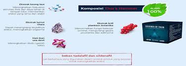 toko dewata jual hammer of thor di bali 082282333388 antar gratis