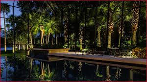Landscape Lighting Jacksonville Fl Landscape Lighting Jacksonville Popularly B Dara Net