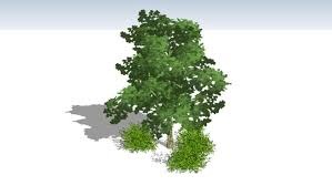 2 5d trees from sets a b 3d warehouse