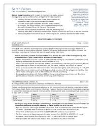 example resume it professional how to write a professional