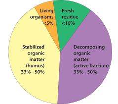 soil food web nrcs soils